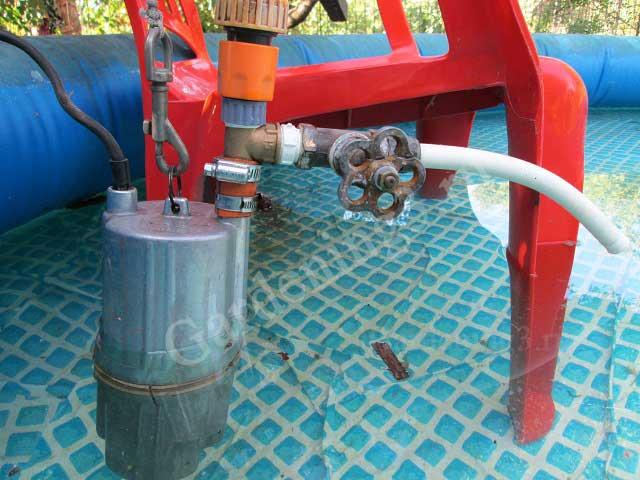 полив растений отстоянной водой